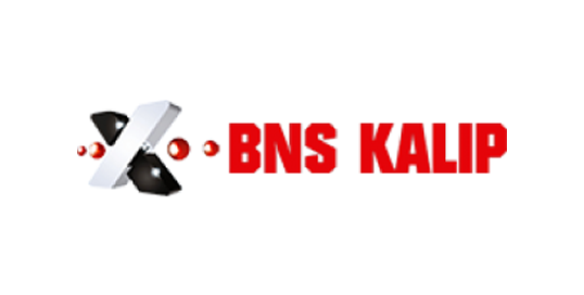 BNS Kalıp
